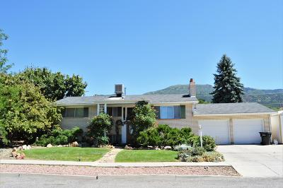 Cedar City UT Single Family Home For Sale: $310,000