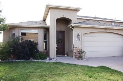 Cedar City UT Single Family Home For Sale: $245,000