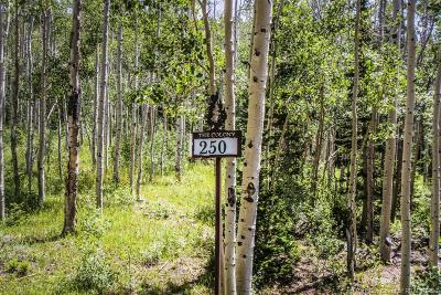 Residential Lots & Land For Sale: 250 White Pine Canyon Road