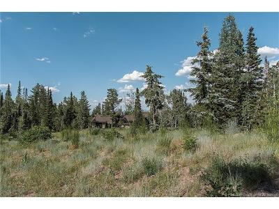 Residential Lots & Land For Sale: 126 White Pine Canyon Road