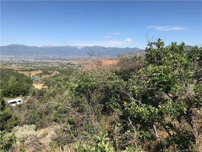 Heber City Residential Lots & Land For Sale: 1603 S Beaver Bench
