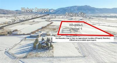 Oakley, Peoa Residential Lots & Land For Sale: 1945 W State Road 32