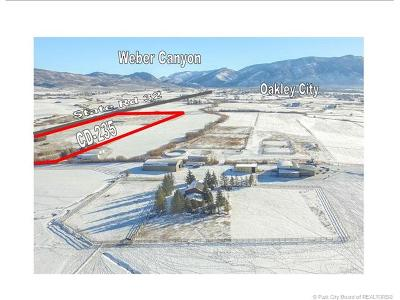 Oakley, Peoa Residential Lots & Land For Sale: 1755 W State Road 32