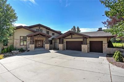 Single Family Home For Sale: 2582 Aspen Springs Drive