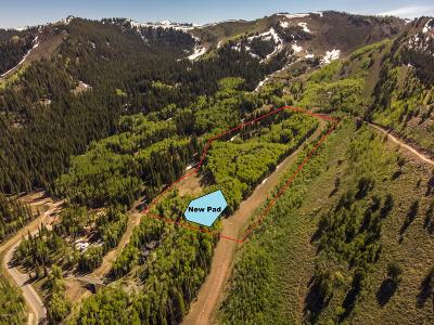 Residential Lots & Land For Sale: 198 White Pine Canyon Road