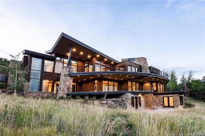 Deer Crest Area, Deer Crest Estates, Deer Crest Village Single Family Home For Sale: 3007 Deer Crest Estates