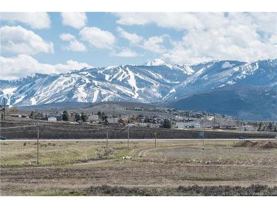 Residential Lots & Land For Sale: 9 W Silver Creek Road Road