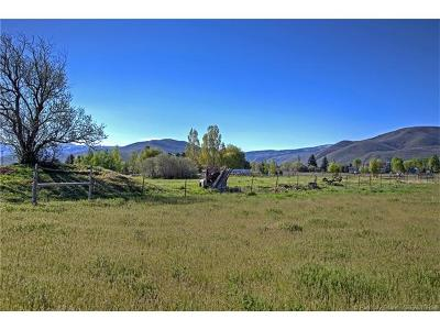 Heber City Residential Lots & Land For Sale: 2300 S Highway 40