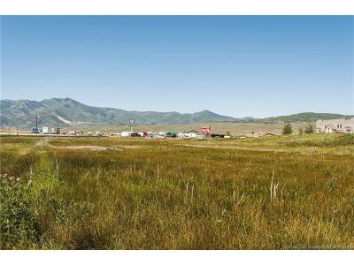Silver Creek Residential Lots & Land For Sale: 790 Division Road