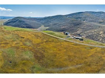 Kamas And Marion Area Single Family Home For Sale: 1889 N 2000 West