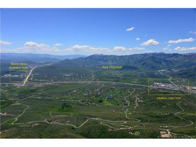 Residential Lots & Land For Sale: 6417 Pace Frontage