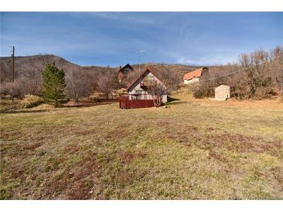 Single Family Home For Sale: 1149 N View Drive