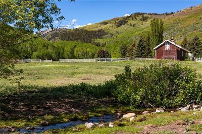 Single Family Home For Sale: 320 W Snows Lane