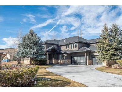 Park Meadows Single Family Home For Sale: 2706 Estates Drive