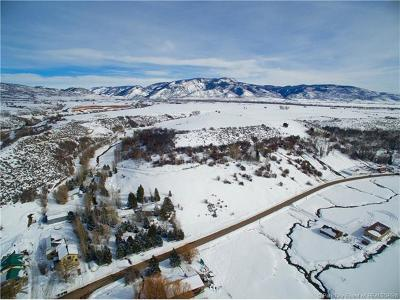 Oakley, Peoa Residential Lots & Land For Sale: 5320 N Wooden Shoe Lane