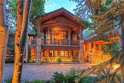 Single Family Home For Sale: 2300 Lucky John Drive