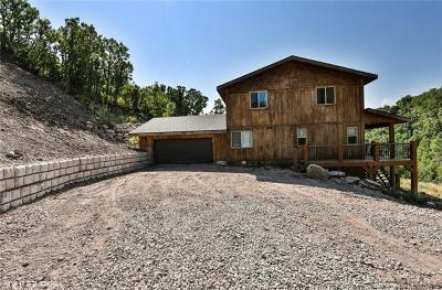 Single Family Home Active - Time Clause: 9964 Kimball Canyon