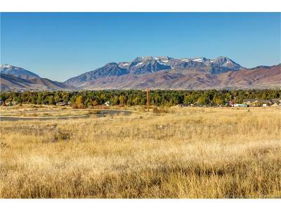 Tuhaye, Red Ledges Residential Lots & Land For Sale: 1595 E Mount Nebo Cir (Lot 38)