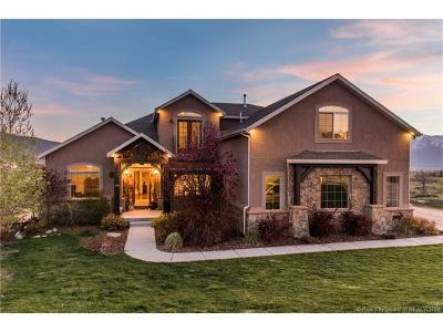 Heber City Single Family Home Active - Time Clause: 560 Lindsay Springs