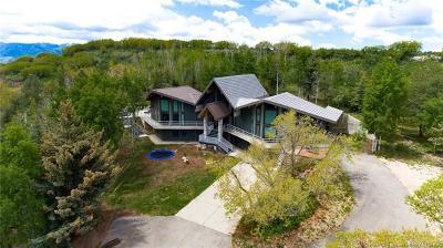 Single Family Home For Sale: 8819 Highfield