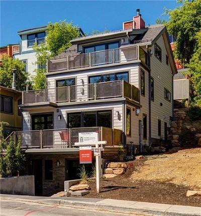 Old Town Area Single Family Home For Sale: 217 Park Ave