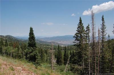 Residential Lots & Land For Sale: 150 White Pine Canyon Road