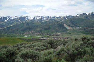 Promontory Area, Glenwild Residential Lots & Land For Sale: 695 Mountain Holly