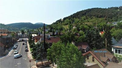 Park City Single Family Home For Sale: 909 Park Avenue