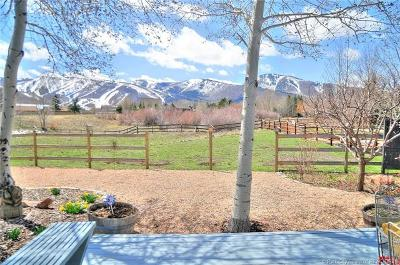 Park Meadows Single Family Home For Sale: 2077 Equestrian Court