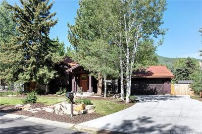 Park Meadows Single Family Home For Sale: 2549 Little Kate Road