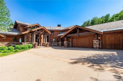 Deer Crest Area, Deer Crest Estates, Deer Crest Village Single Family Home For Sale: 2917 W Pioche Court