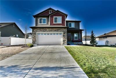 Heber City Single Family Home For Sale: 980 E 650 South