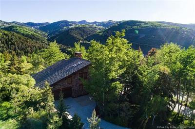 Park City Single Family Home For Sale: 242 Golden Eagle Drive