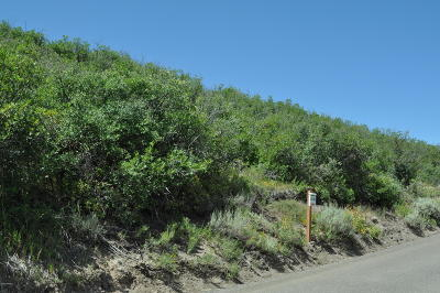 Heber City Residential Lots & Land For Sale: 1689 Ridgeline Drive