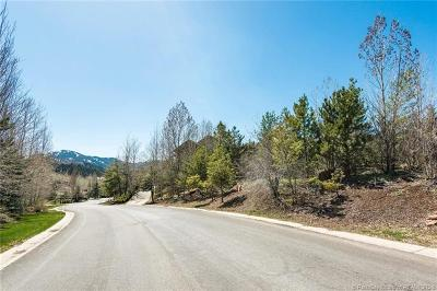 Park City Residential Lots & Land For Sale: 3380 W Saddle Back Rd