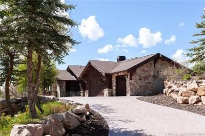Park City Single Family Home For Sale: 1107 Snow Berry Street