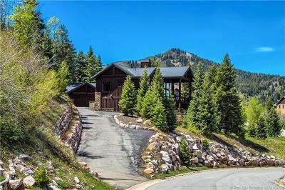 Single Family Home For Sale: 7177 Canyon Drive