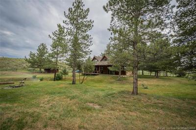 Heber City Single Family Home For Sale: 800 S 3600 East