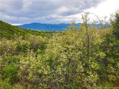 Heber City Residential Lots & Land For Sale: 7386 E Valley View Drive