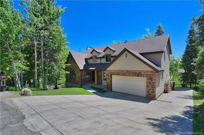 Single Family Home For Sale: 485 Aspen Drive
