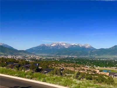 Tuhaye, Red Ledges Residential Lots & Land For Sale: 2414 E Flat Top Mountain Dr (Lot 93)