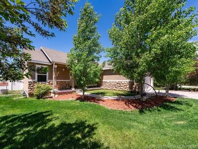 Oakley, Peoa Single Family Home For Sale: 5301 N Frontier Circle