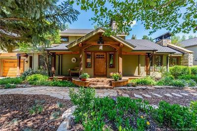 Park Meadows Single Family Home For Sale: 2145 Lucky John Drive