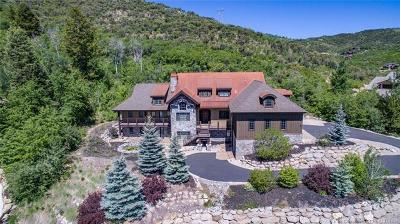 Park City Single Family Home For Sale: 4661 McKinney Court