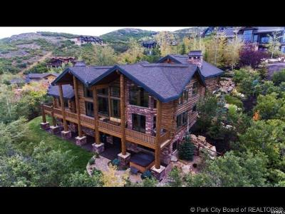 Single Family Home For Sale: 3838 Solamere Drive