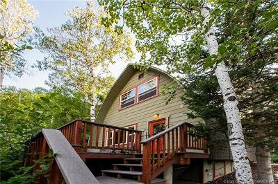 Park City Single Family Home For Sale: 4521 Hidden Cove Road