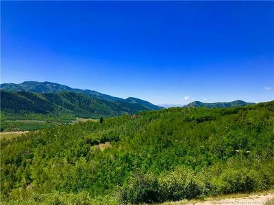 Oakley, Peoa Residential Lots & Land For Sale: 131 Mountain View Road
