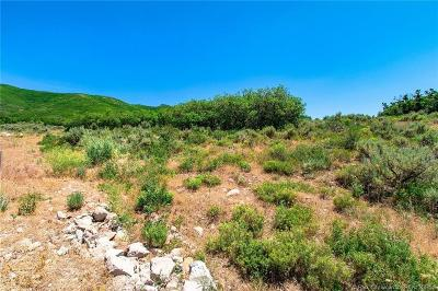 Residential Lots & Land For Sale: 11552 N White Tail Court