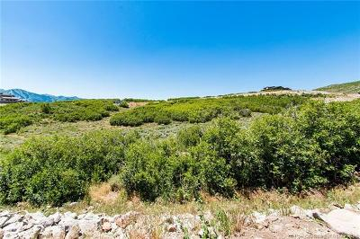 Residential Lots & Land For Sale: 11375 N Fox Hollow Court