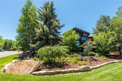 Park Meadows Single Family Home For Sale: 2216 Sunset Court